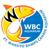 WBC Aquarium Indonesia